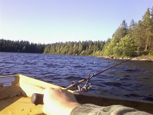 rowing and fishing