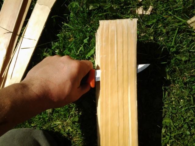 the initial cut