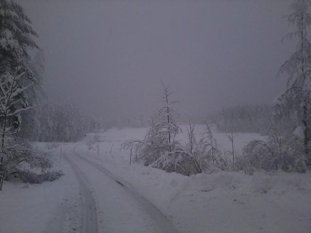 Snowfall on village fields.
