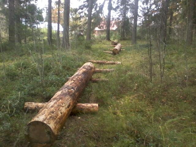 A track for hauling logs