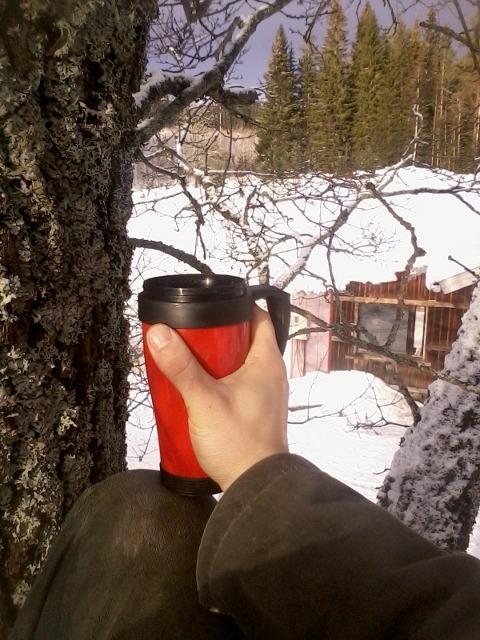 elevated coffee break